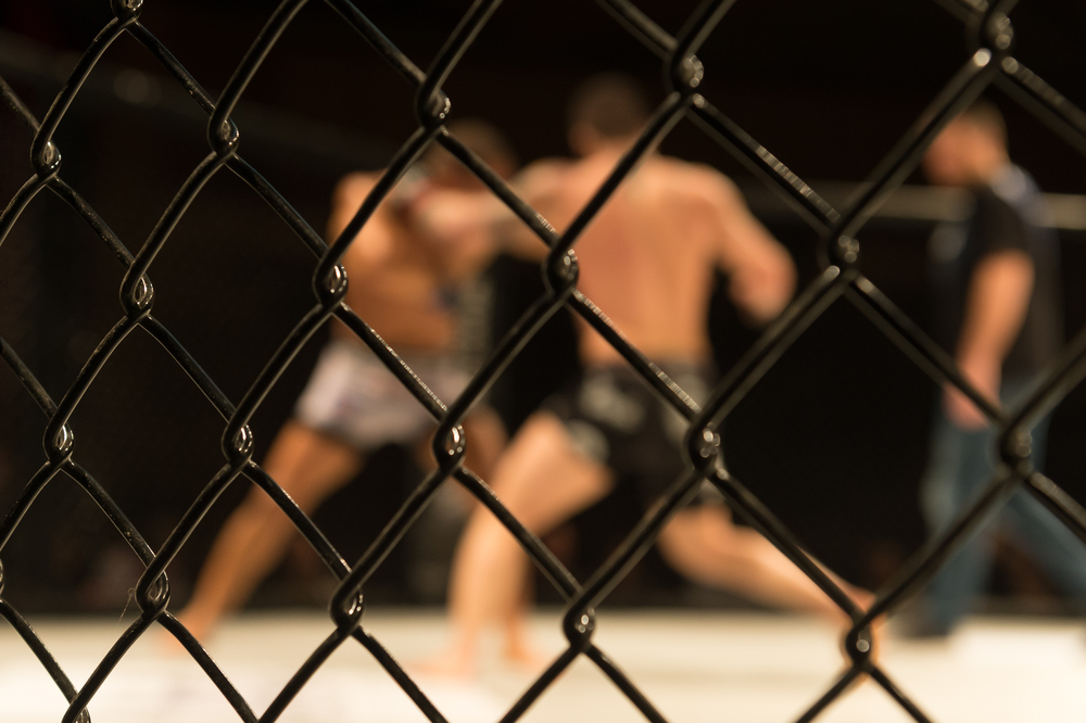 fight_kampsport_362372921